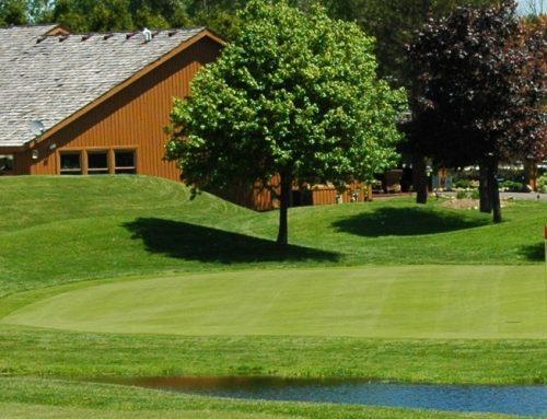 Troy golf leagues
